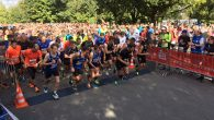 Elias Sansar und Michaelle Rannacher haben den 15. Böckstiegellauf gewonnen. Rannacher, im Vorjahr über 10 km erfolgreich, lief erstmals die längere Distanz. Über 18 Kilometer ließ die Läuferin der DJK […]